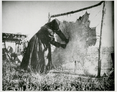 Plains Indian camp scene, woman working on a hide