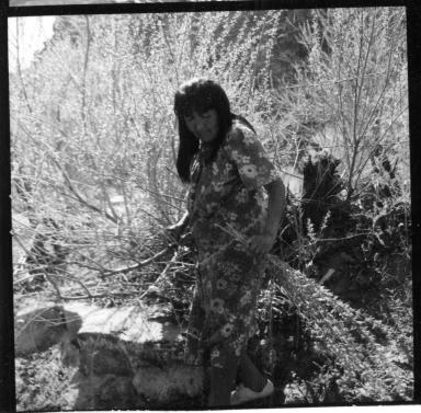 Havasupai gathering willow