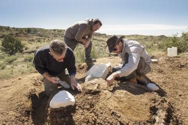Corral Bluffs fieldwork