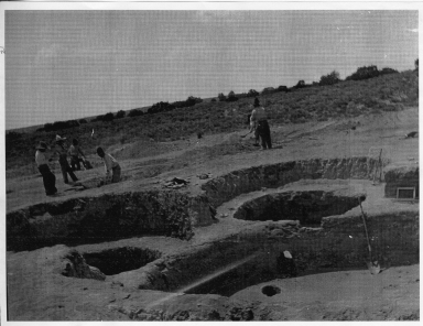 Unidentified Dig