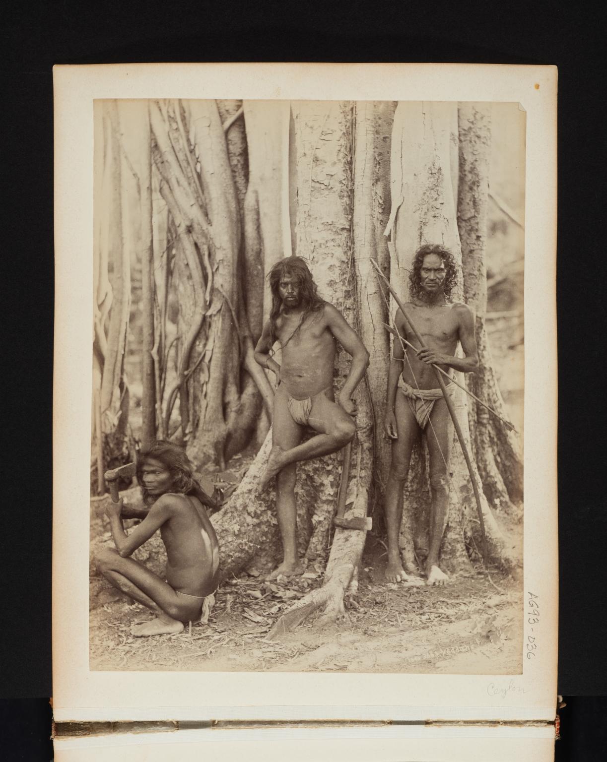 Portrait of three Veddahs, native people in Sri Lanka.