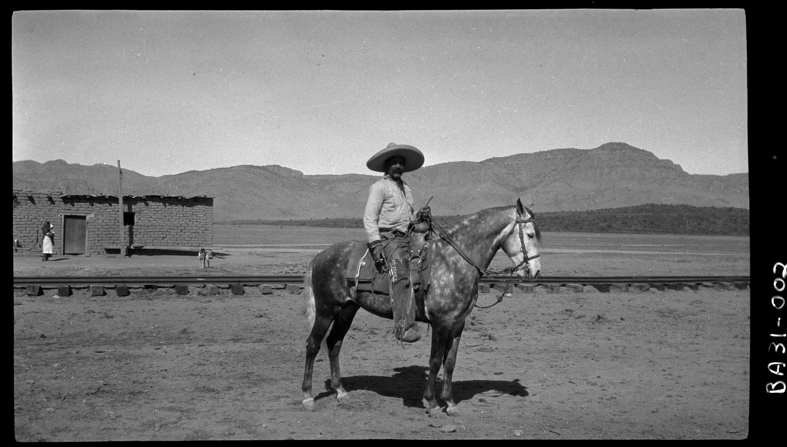 Fieldwork in Mexico