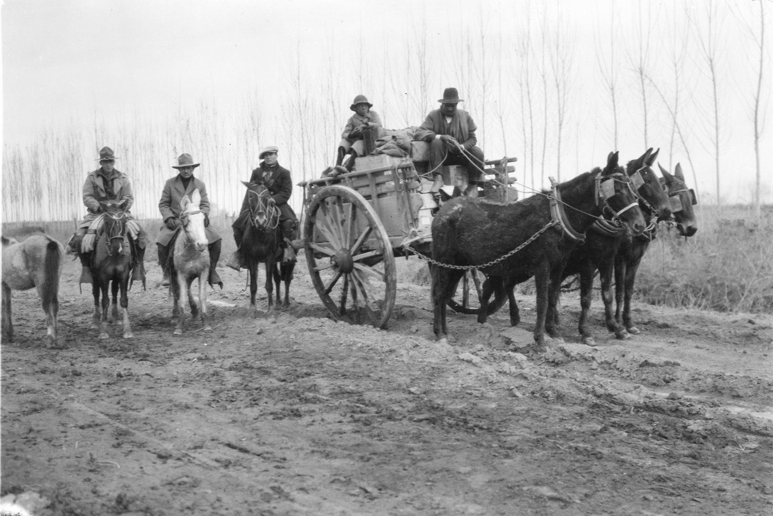 Expedition members with mules