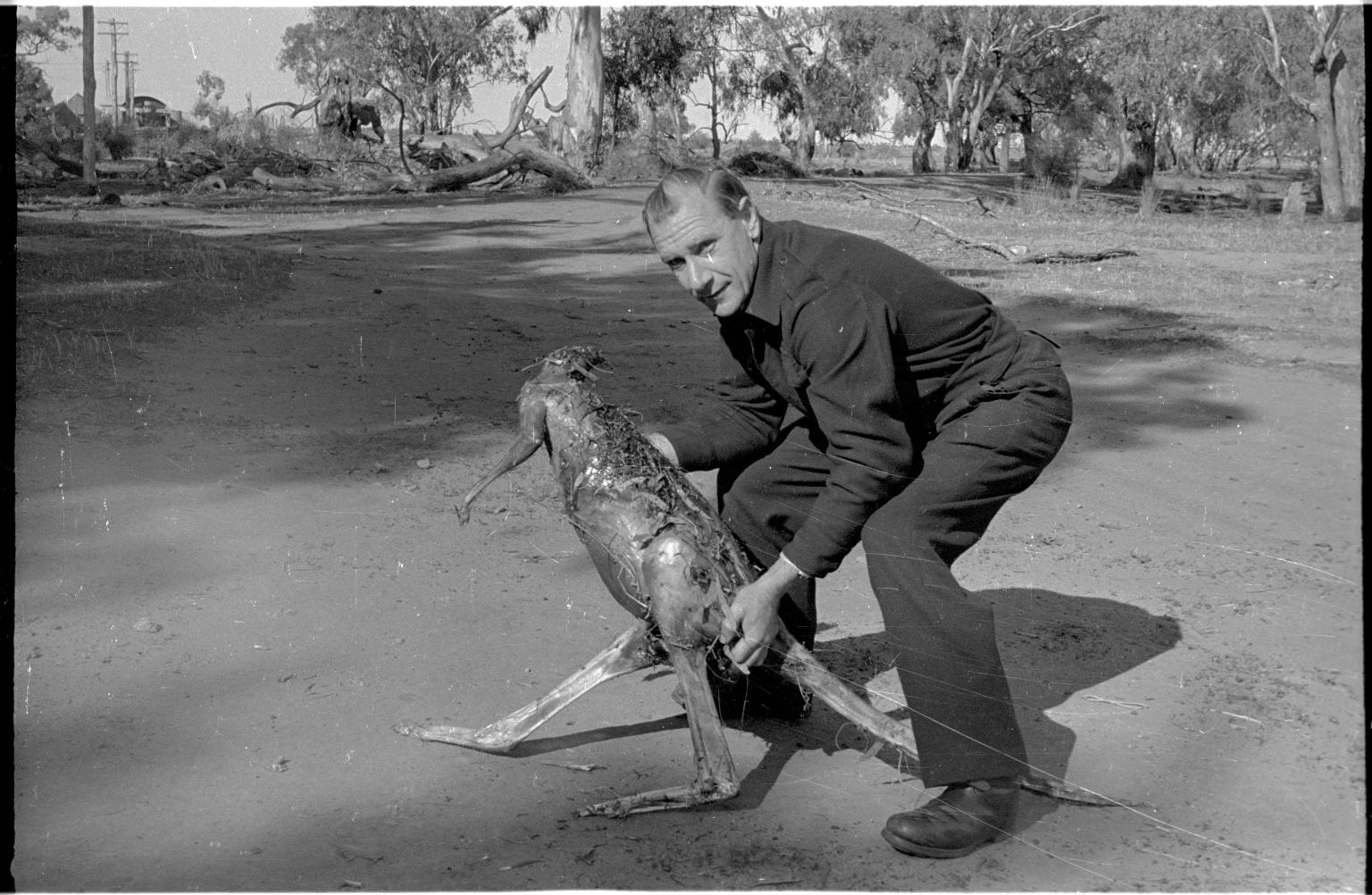 Bob Boswell with a kangaroo road kill