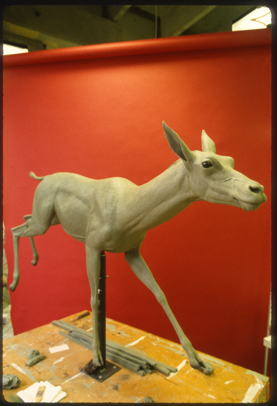 Models of ancient gazelle camels