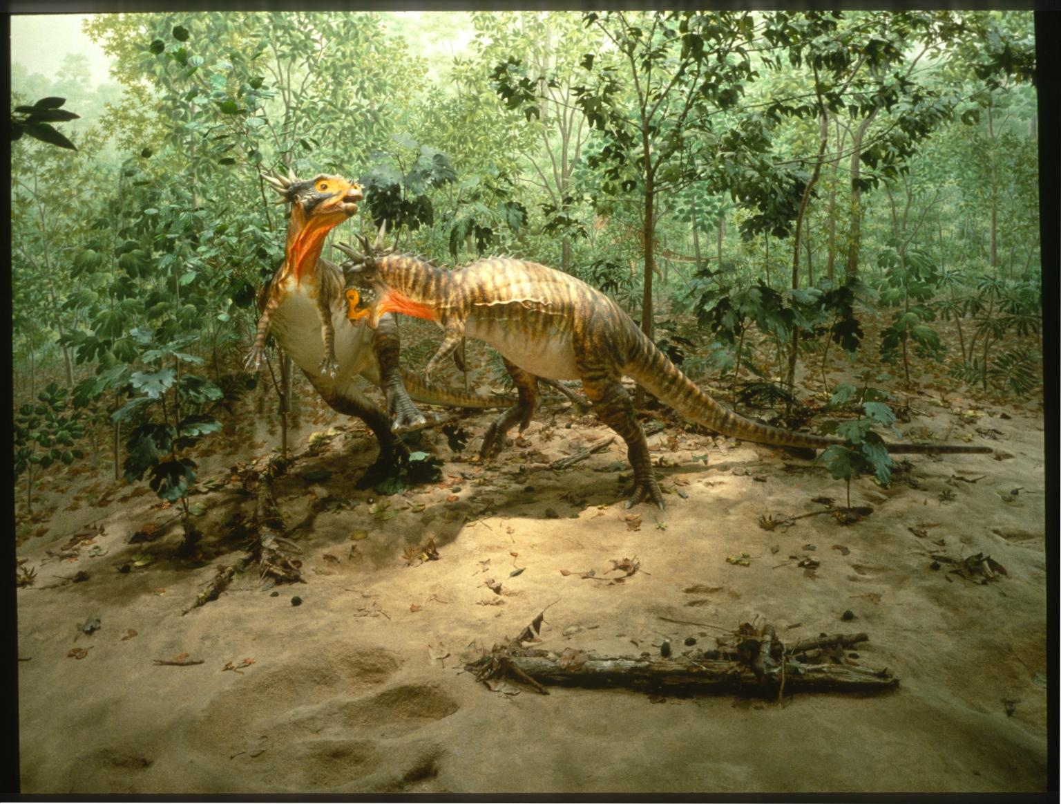 Cretaceous Creekbed diorama
