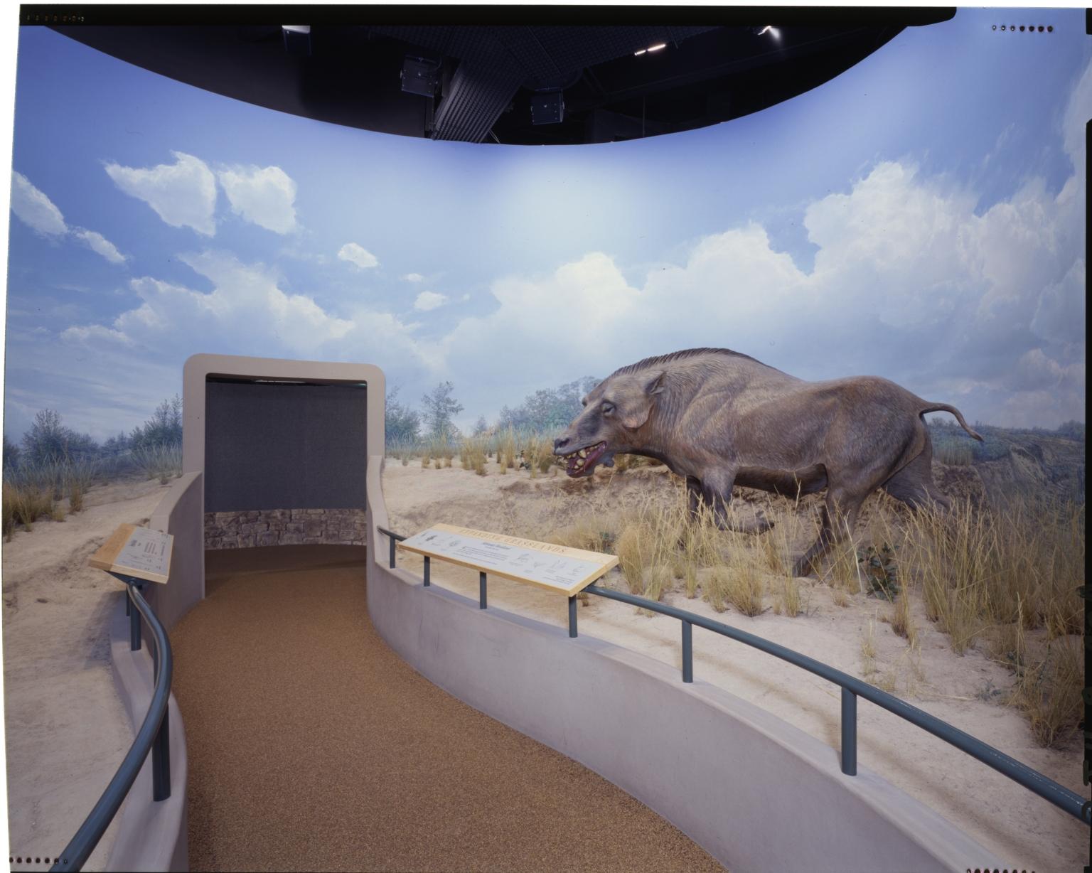 Nebraska Woodland diorama