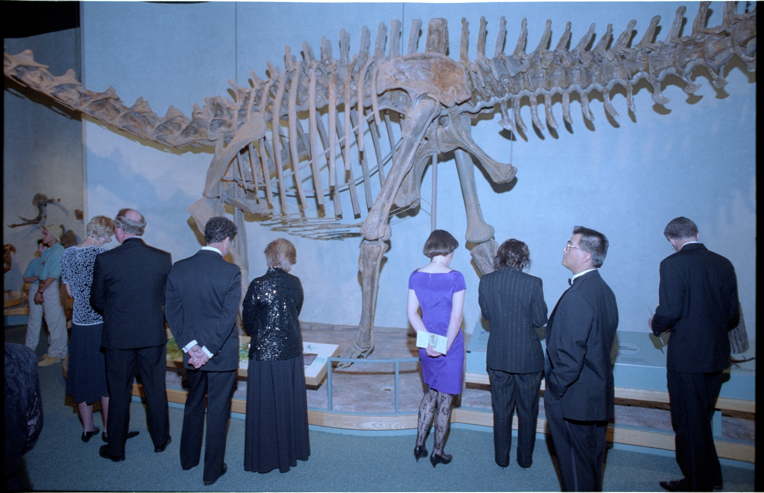 Prehistoric Journey Exhihibit preparation and construction
