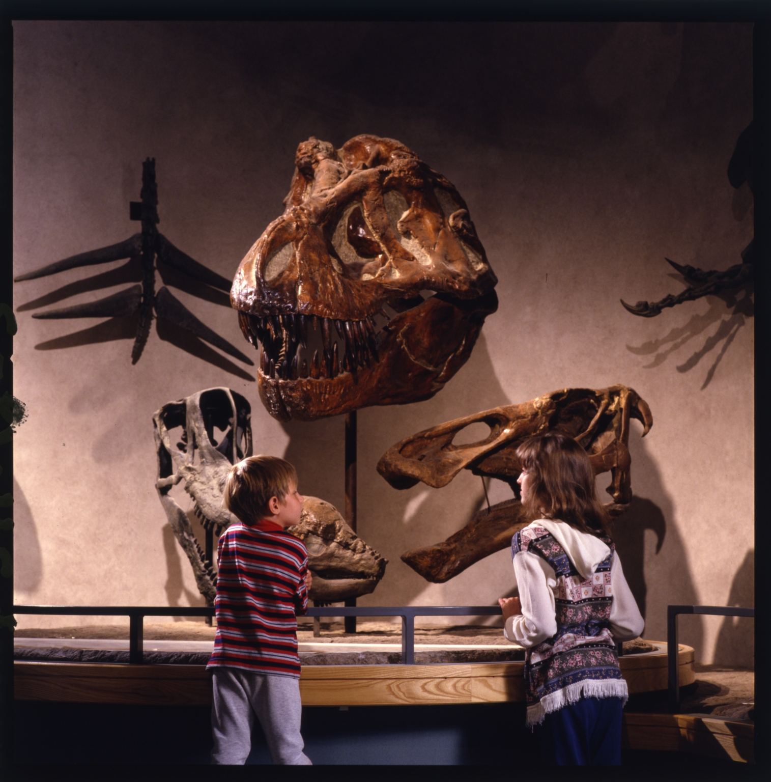 Prehistoric Journey Exhihibit