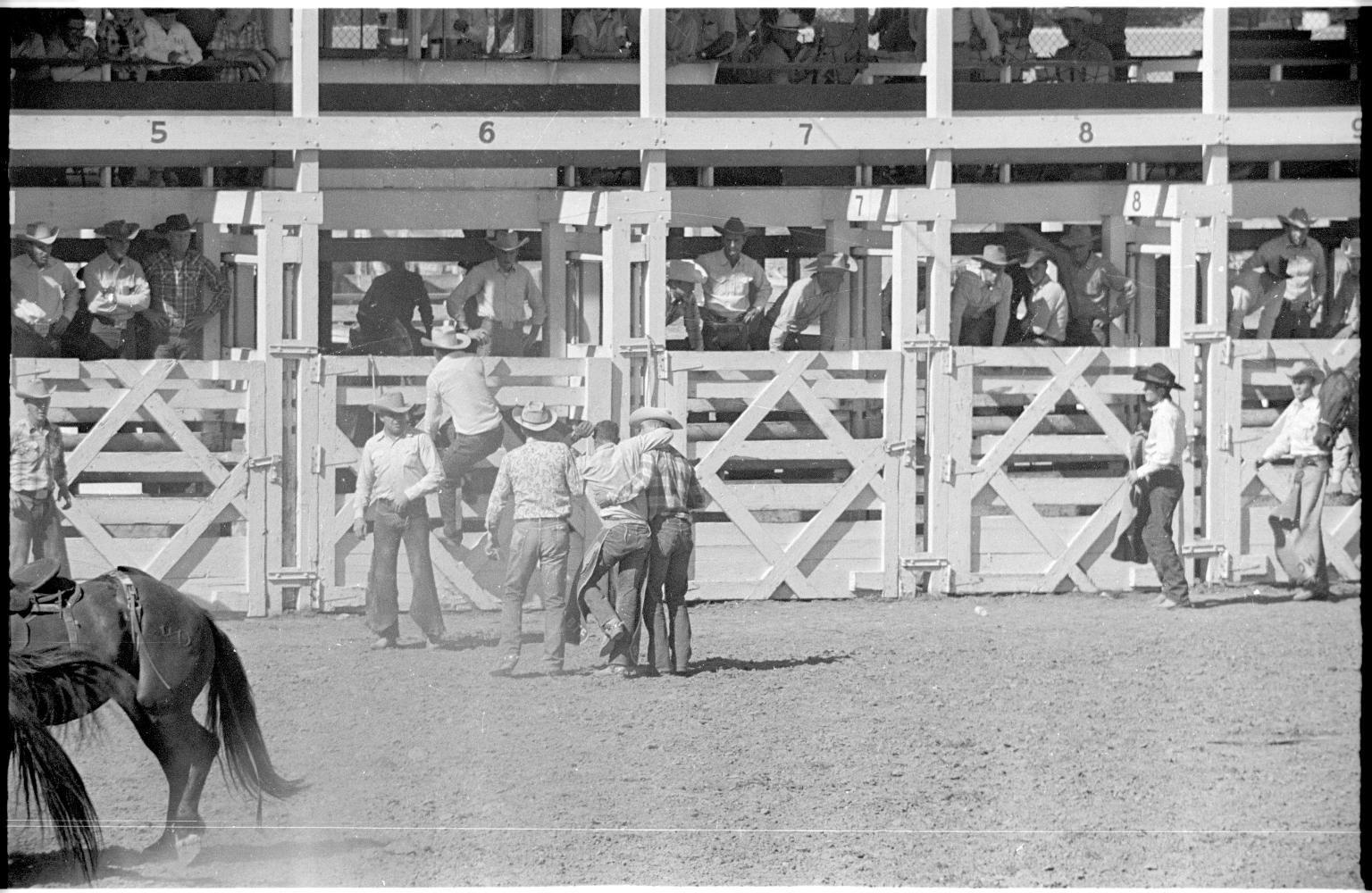 Colorado State Fair & Rodeo