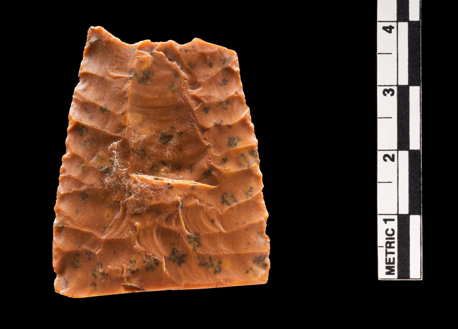 Paleoindian Tradition Projectile point