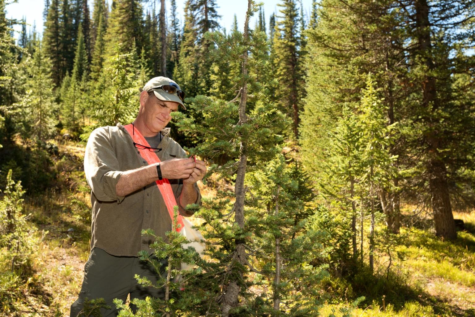 Zoology fieldwork with Dr. Scott Sampson