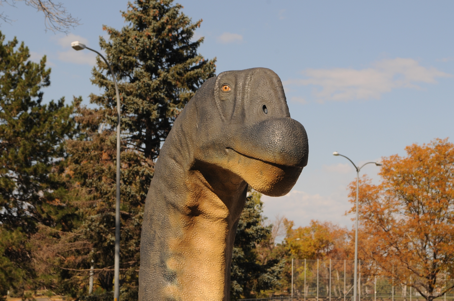 Installation of Dinosaur Sculptures in Parking Garage