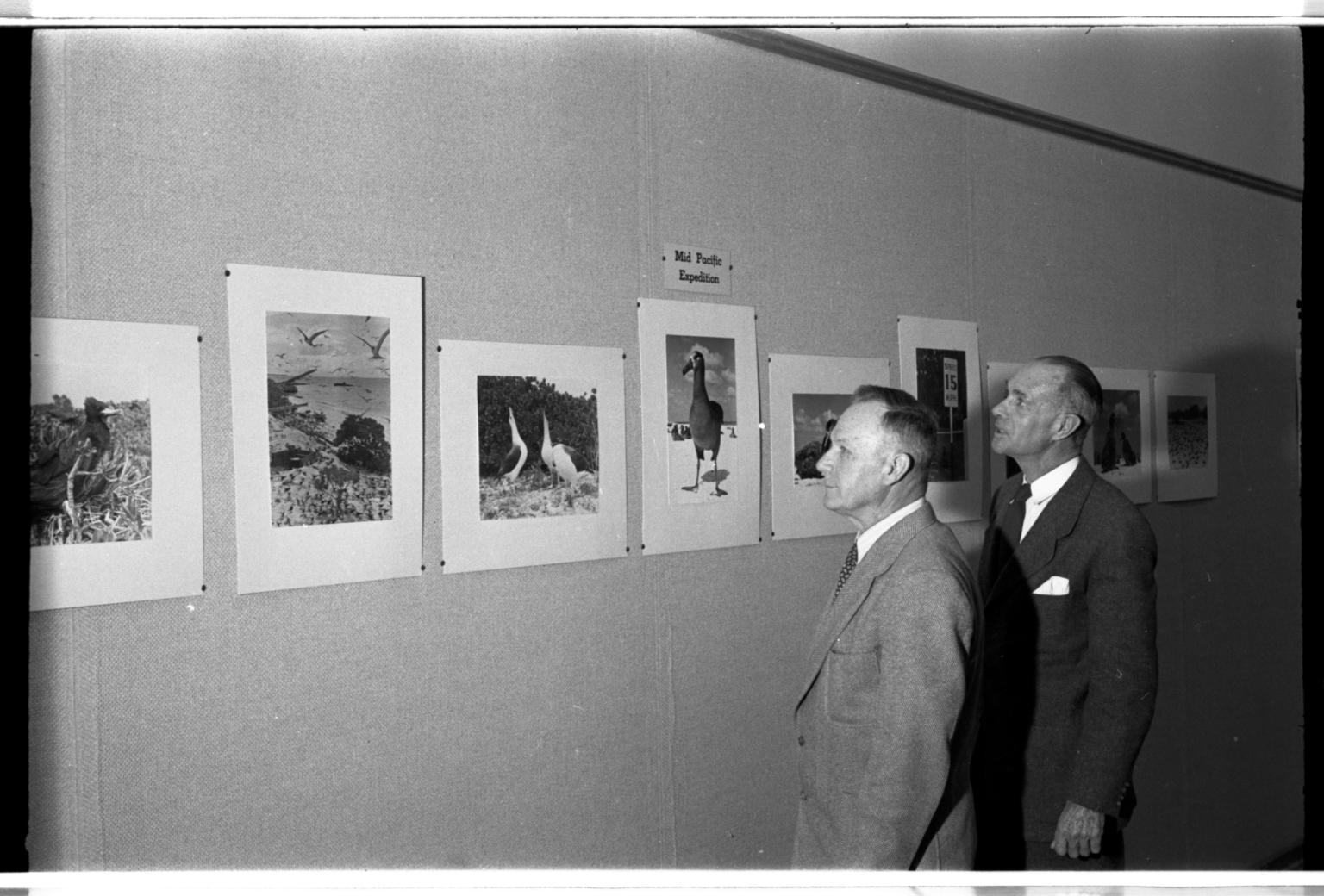 Albert Rogers and Robert J. Niedrach