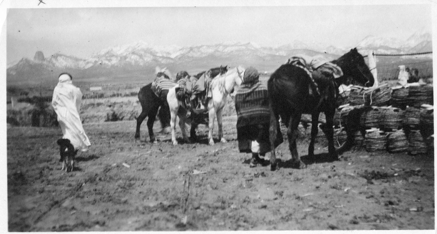 Portrait of Ute women with horses
