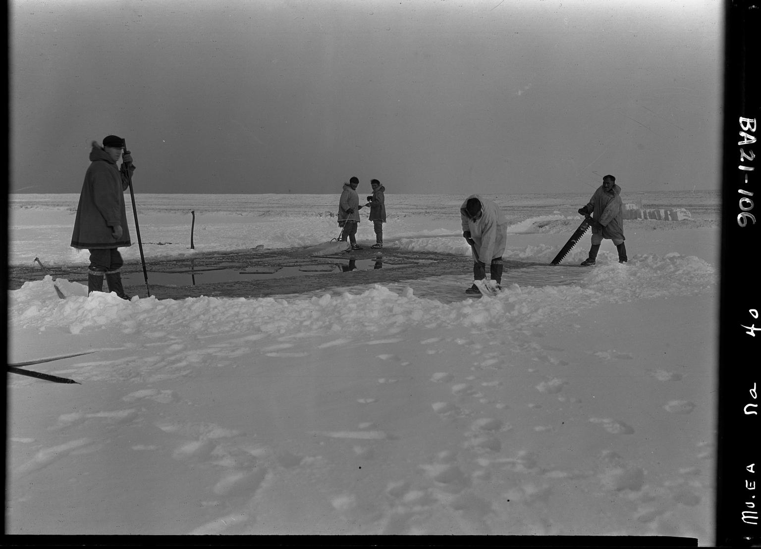 Bailey fieldwork in Alaska