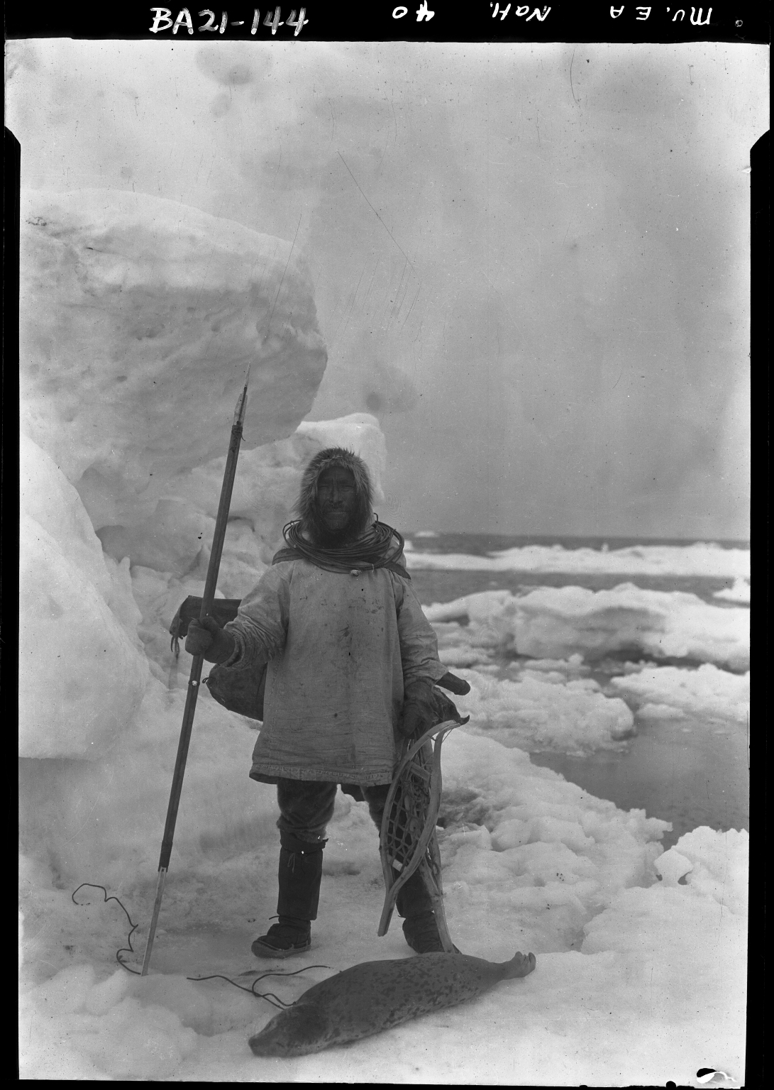 Alfred M. Bailey fieldwork in Alaska