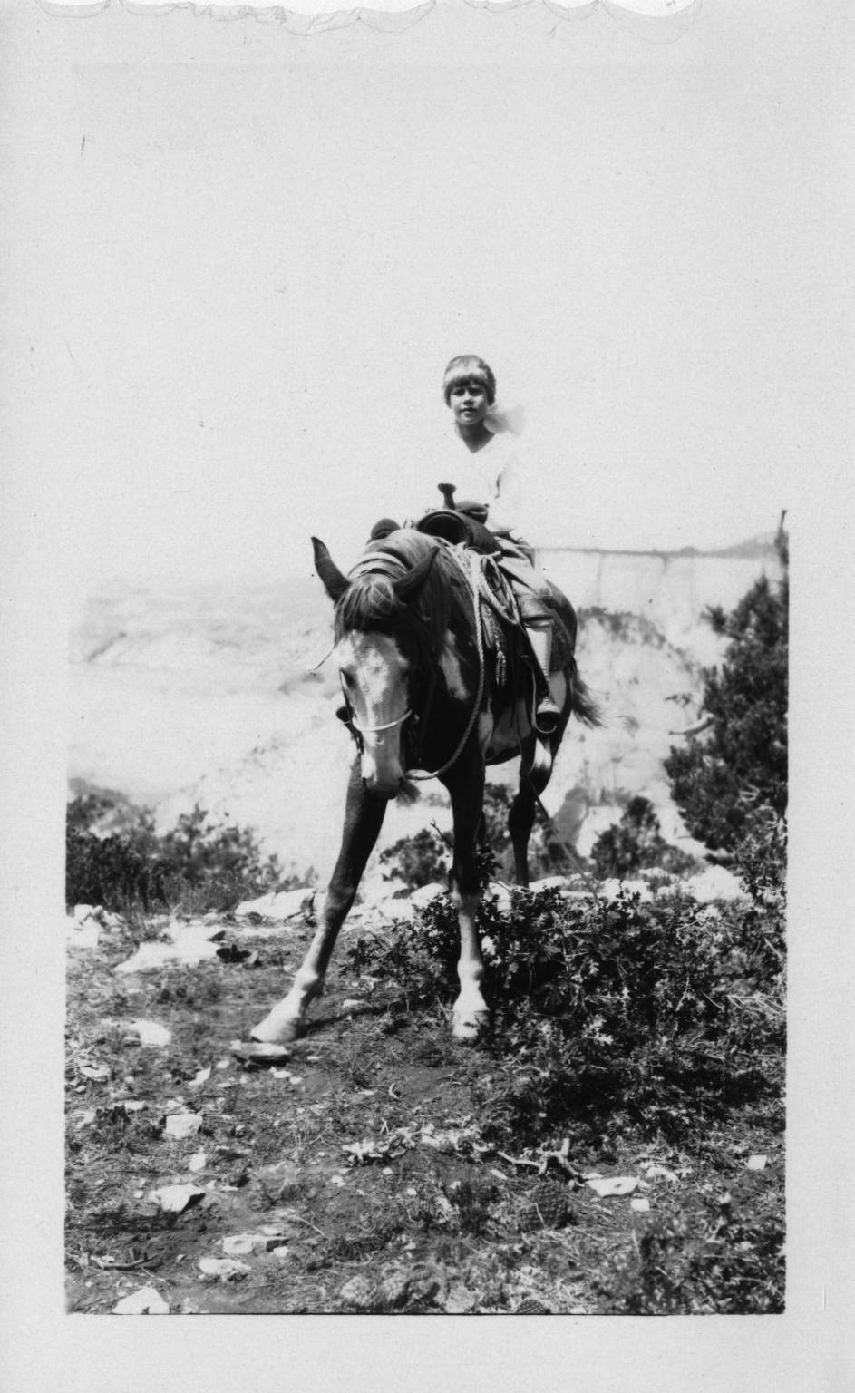 Alice on horseback