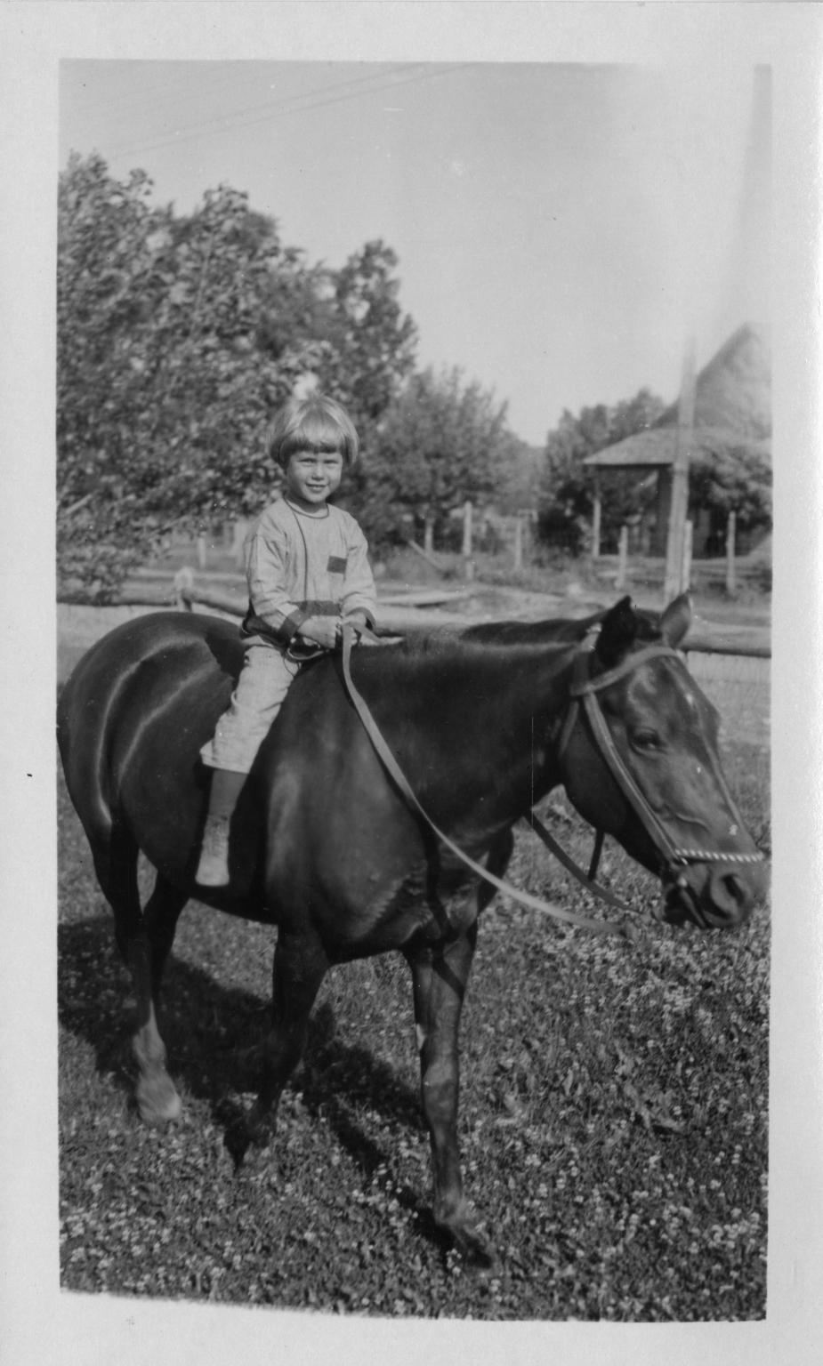 Alice on horseback