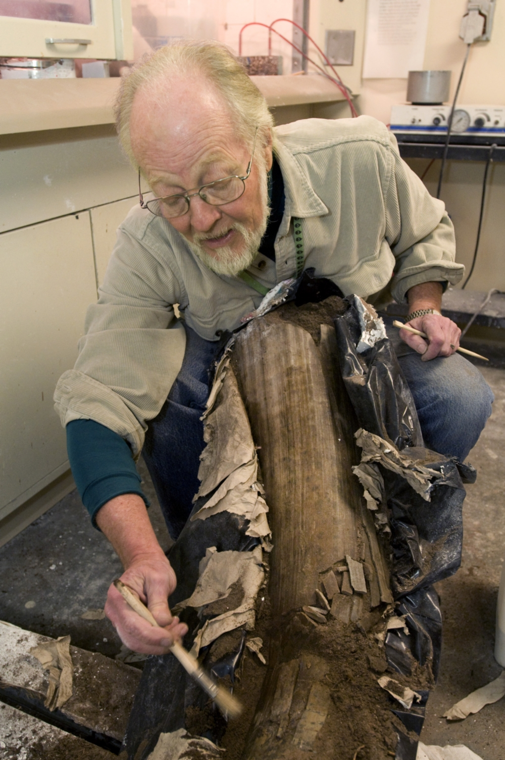 Cleaning a Fossil from Snomastadon Excavation in Paleo Lab