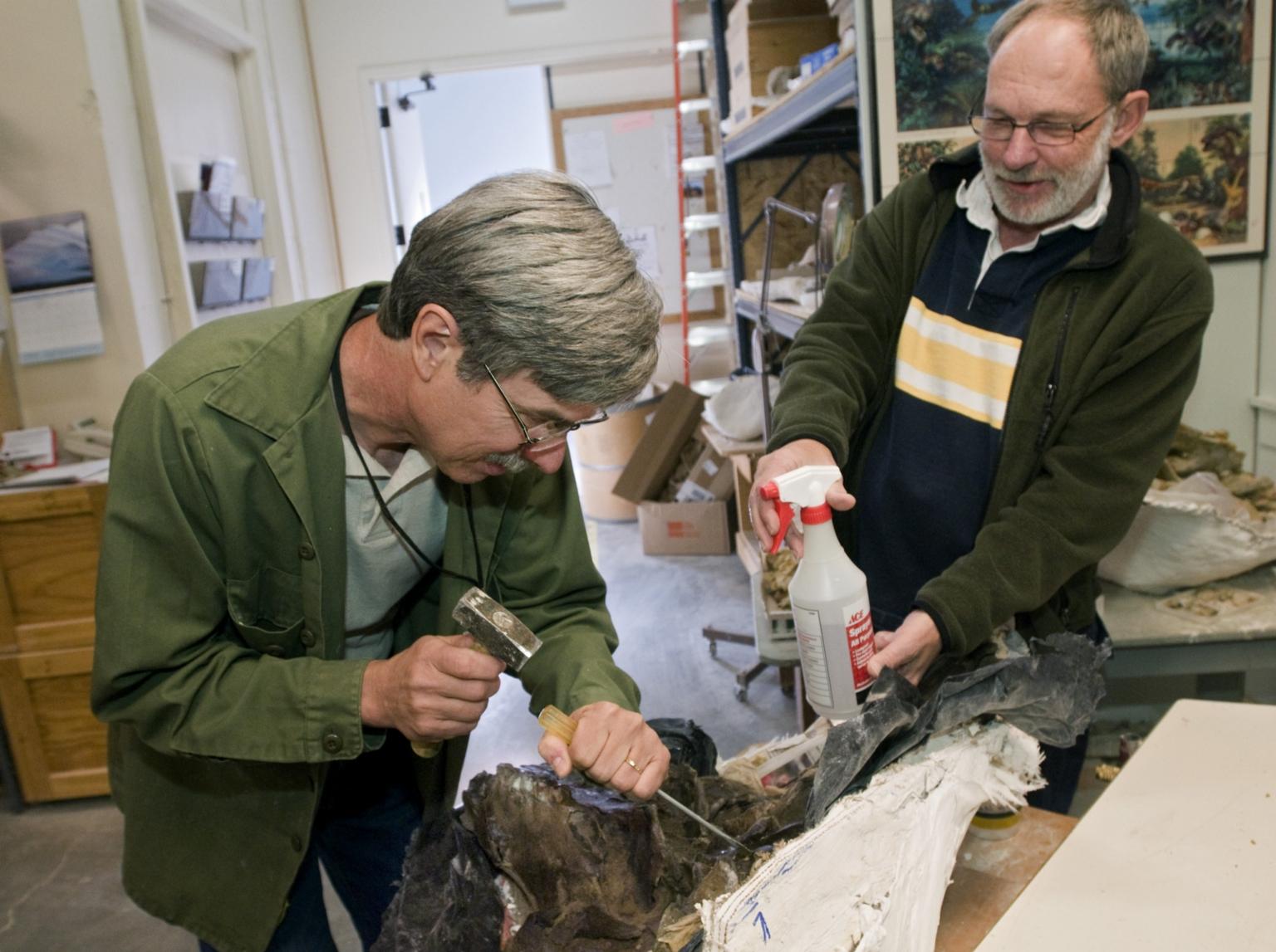 Work in Paleo Lab from Snomastadon Excavation