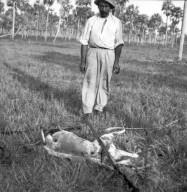 Indian with deer specimen.