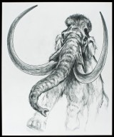Graphic drawing of a Mammoth