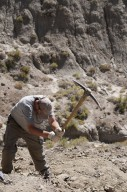 Dr. Ian Miller wields a pick to excavate a dig site on the Kaiparowits Plateau.