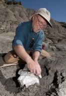DMNS Volunteer Mark Hunter prepares a specimen for removal and transport back to the lab.