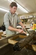 Specimens in paleo lab