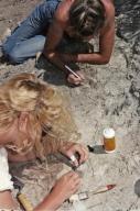 DMNH Paleontology Department Scrapbook
