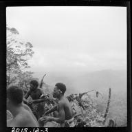 Bougainville Island