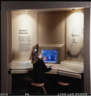 Museum visitors using touch-screen