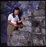 Prehistoric Journey Exhibit Construction and Preparation