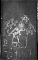 Archaeological fieldwork of Betty and Harold Huscher