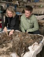 Explaning work on Deer Matrix from Snowmastadon Excavation  in Paleo Lab