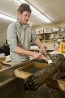 Washing wood from Snowmastadon Excavation in Paleo Lab