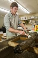 Washing wood from Snowmastadon Excavation in Paleo Lab