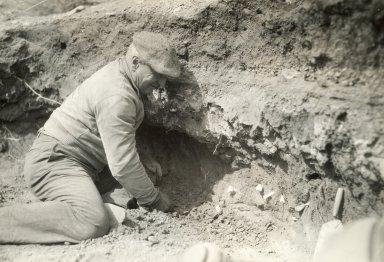 Roy G. Coffin