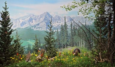 Subalpine Forest Diorama