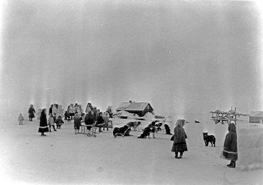 Dog race at Christmas