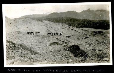 And Still the Tortuous Glacier Trail