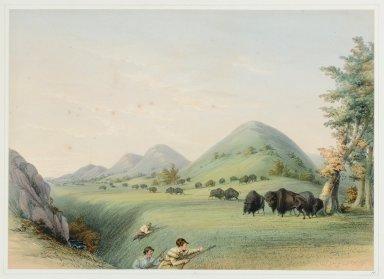 Buffalo Hunt. Approaching in a Ravine.