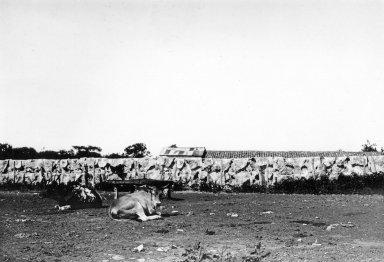 Meat drying at Descalvados (Ranch)