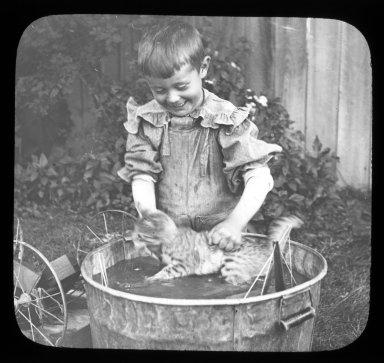 Boy washing cat