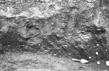 Meteorodes in situ