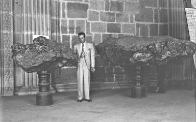 Unidentified man with exhibited specimens