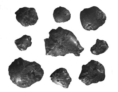 9 specimens from Estherville, Iowa