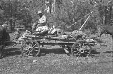 Specimen loaded on wagon for transport