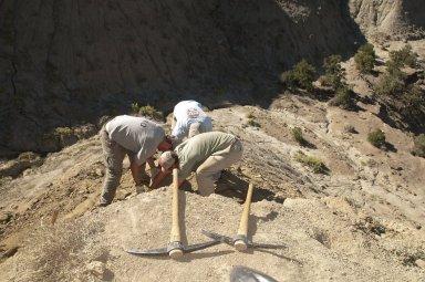 L-R: Dr. Ian Miller, DMNS Volunteer Dane Miller (foreground), and DMNS Volunteer David Allen (rear) stoop to remove a large rock specimen.